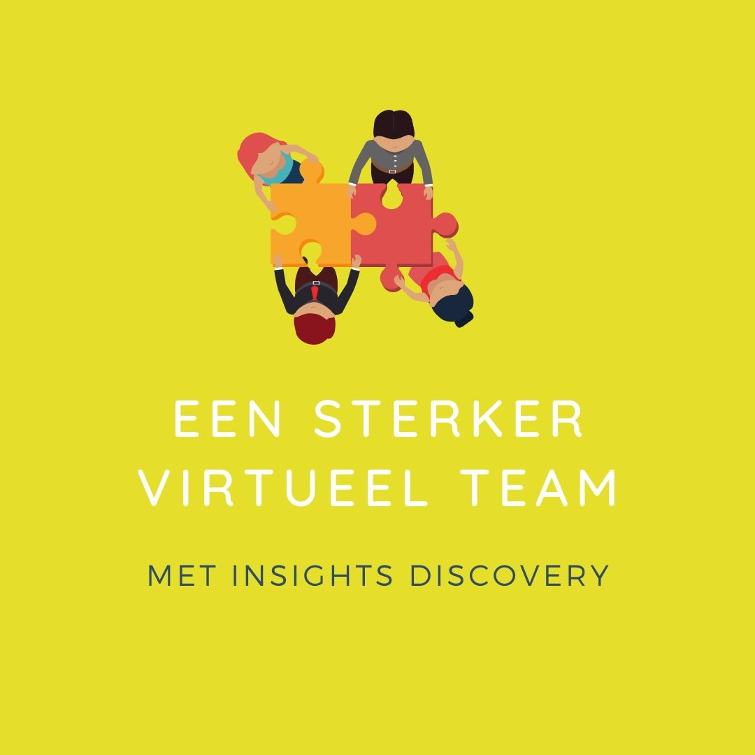 Virtueel team insights discovery